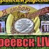 Киреевск LIVE