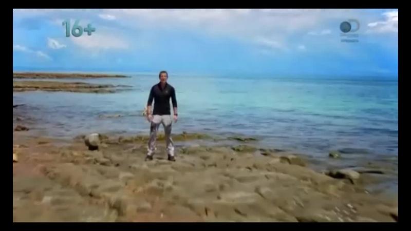 Остров с Беаром Гриллсом The Island with Bear Grylls