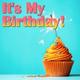 Wildlife - Happy Birthday
