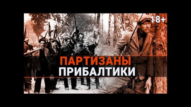 Настоящие герои Прибалтики Партизаны Партизаны НастоящиеГерои
