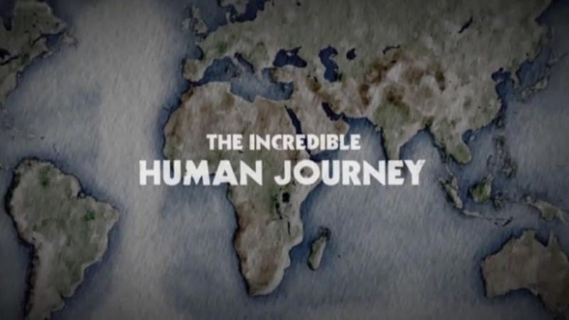 Путешествие человека 1 серия Из Африки The Incredible Human Journey 2009