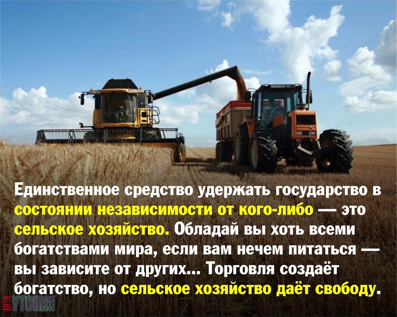 АНТИУТОПИЯ  УТОПИЯ 137962
