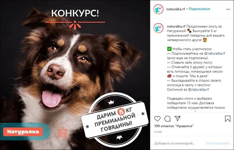 1300 продаж и 1500 подписчиков для интернет-магазина зоотоваров в Instagram, изображение №39