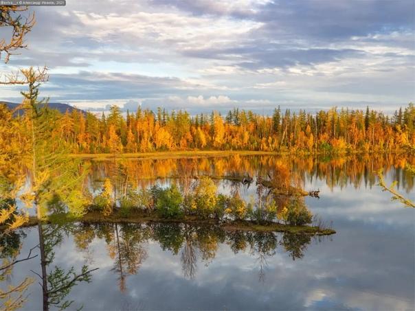 Осенние краски в окрестностях ТалнахаФото: Алексан...