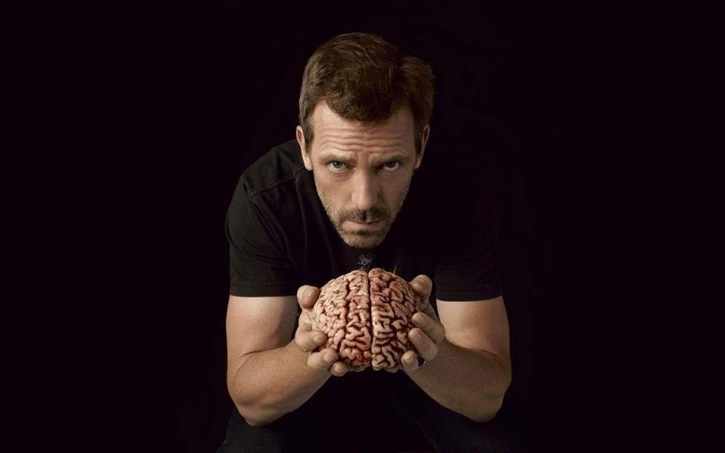 «Ваш мозг — ленивая сволочь» или 9 простых приемов как предотвратить застывание и деградацию разума