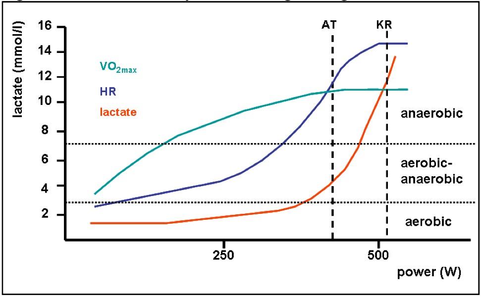 Динамика индикаторов нагрузки во время нагружения