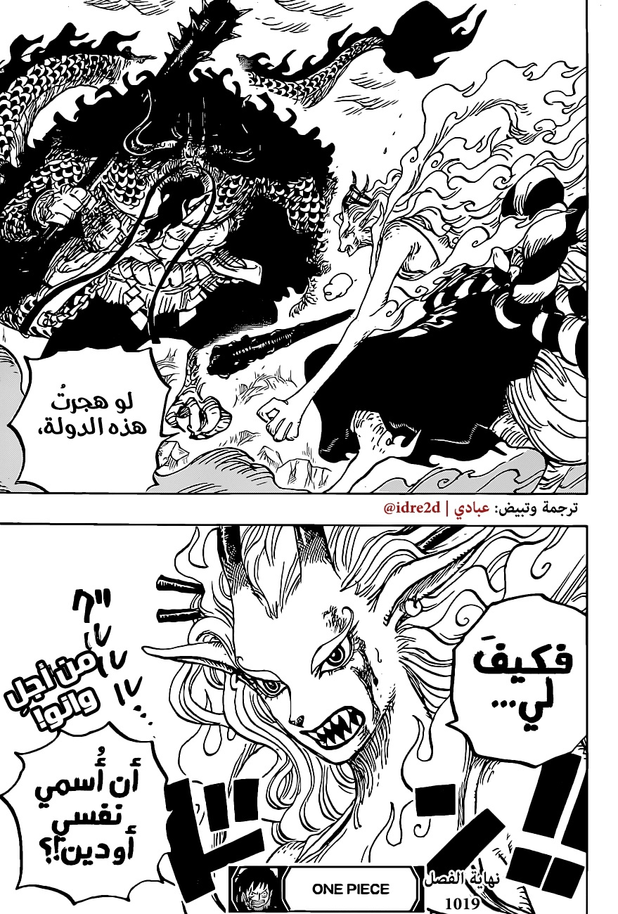 One Piece Arab 1019, image №18