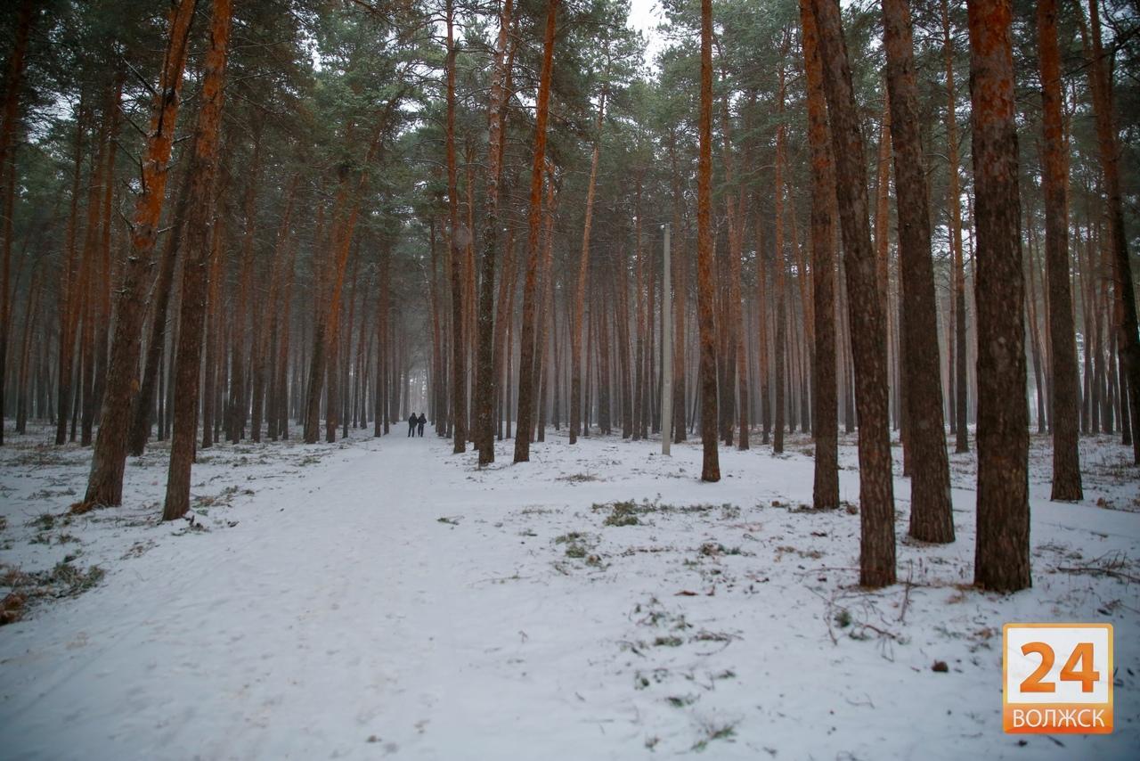 Синоптики пообещали резкое потепление в России