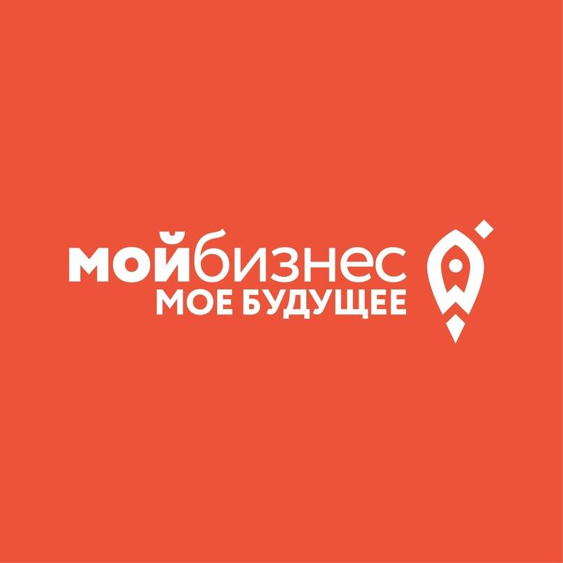 Социальные предпринимали Татарстана могут получить льготный микрозайм, изображение №1