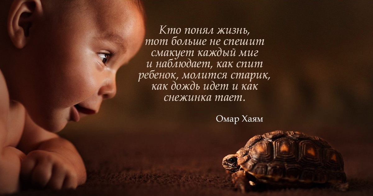 фото из альбома Ольги Фальковой №8