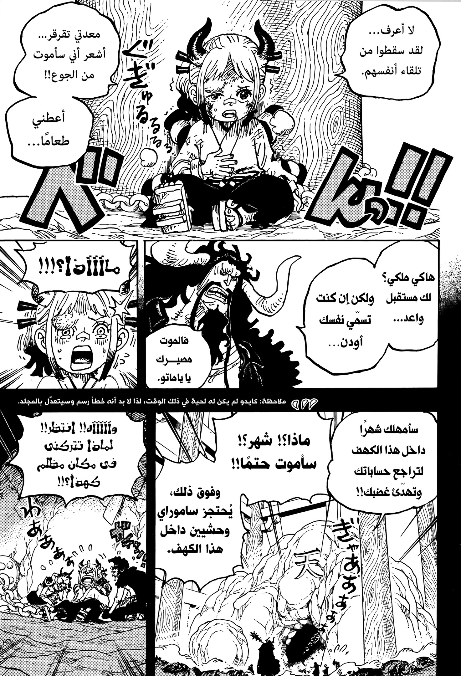 One Piece Arab 1024, image №11