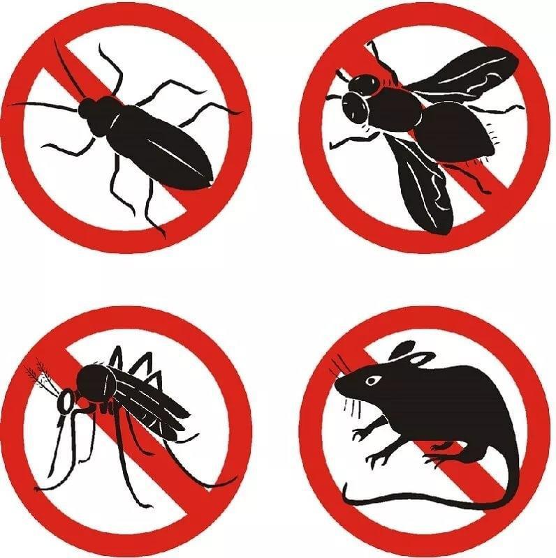 Обработка участка от комаров, клещей, | Объявления Орска и Новотроицка №28375