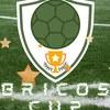 BRICOS CUP ll