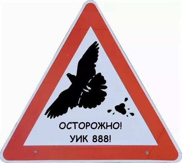 «Не грози на грязи, сперва вывези.»Русская народна...