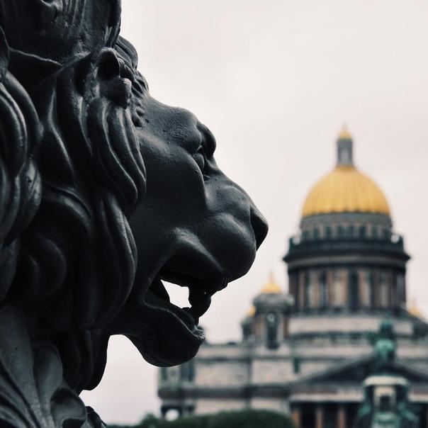 Петербург признан лучшим городом мира   Северная столица стала победителем в ключевой номинации престижной туристской премии... Санкт-Петербург