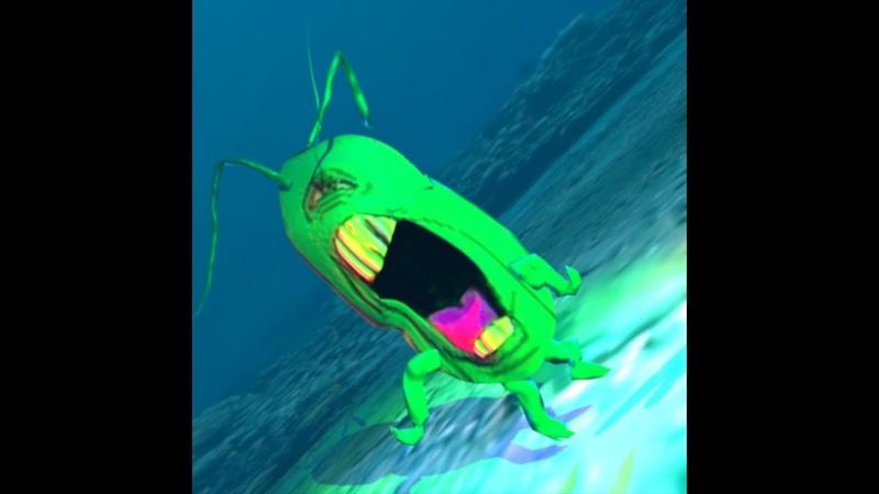 Plankton Knows