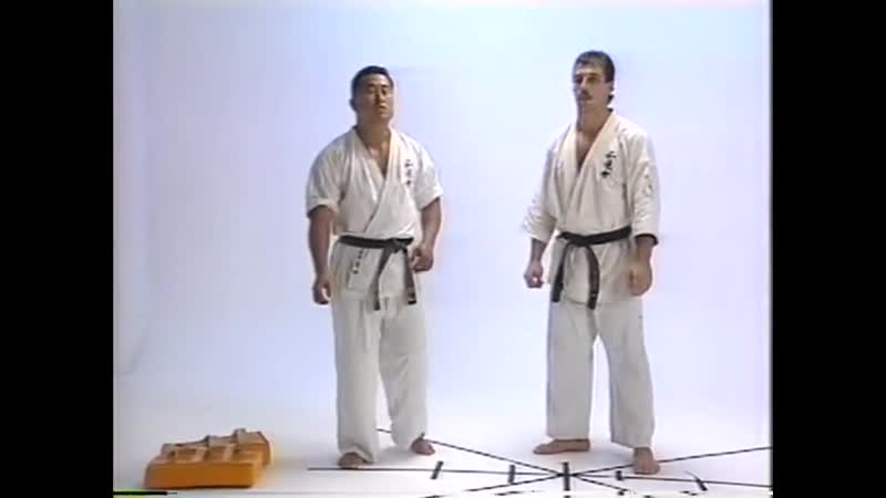 Andy Hug kyokushin training DVD 真会 with Nobuaki Kakuda