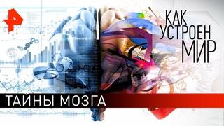 """Тайны мозга. """"Как устроен мир"""" с Тимофеем Баженовым ()."""