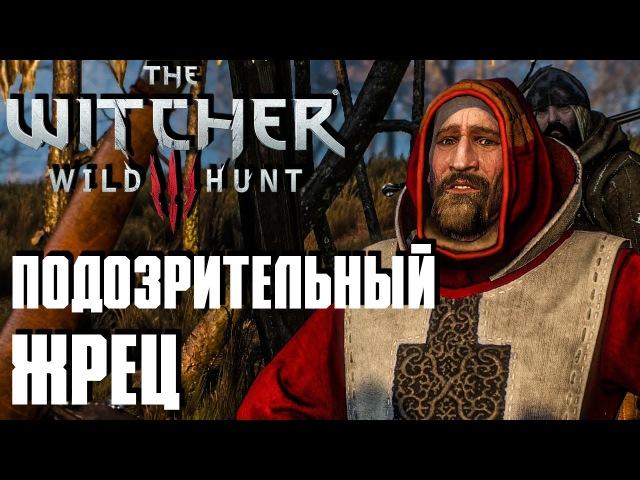 Ведьмак 3 Дикая Охота(The Witcher 3 Wild Hunt) - Подозрительный Жрец 9 Сложность На Смерть!