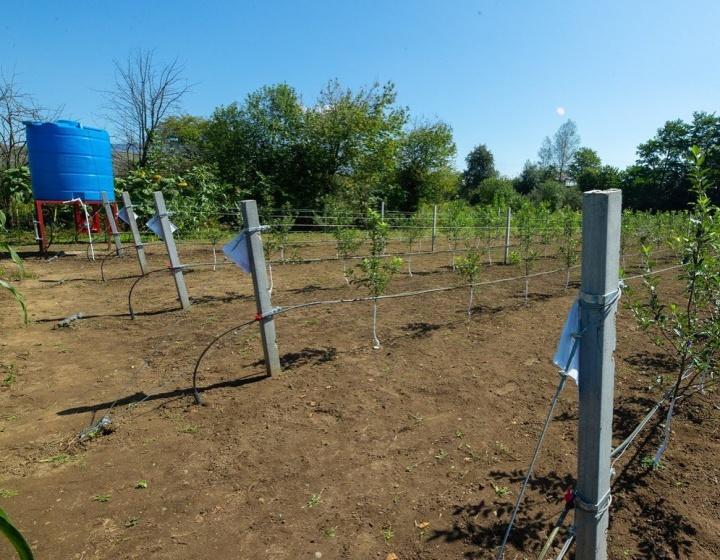 В Карачаево-Черкесии заложат 90 мини-садов интенсивного типа