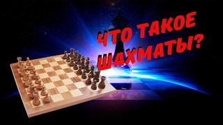 Что такое ШАХМАТЫ? Зачем играть в шахматы? И чем они полезны!