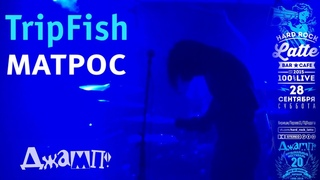 TripFish - Матрос Live
