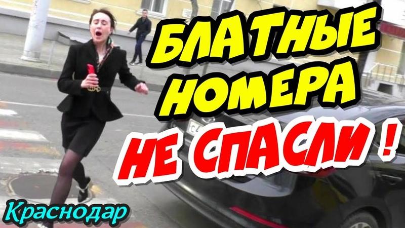 🔥 Блатные номера дерзкую автоледи не спасли 🔥 Краснодар