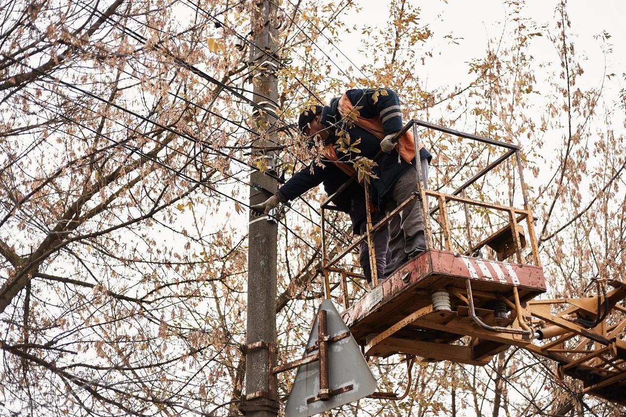 В Курске продолжают срезать незаконные провода