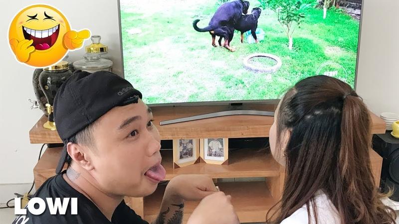 Coi Cấm Cười Phiên Bản Việt Nam | Tập 31 | LOWI TV
