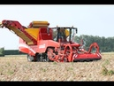 GRIMME TECTRON 415 self propelled Potato Harvester
